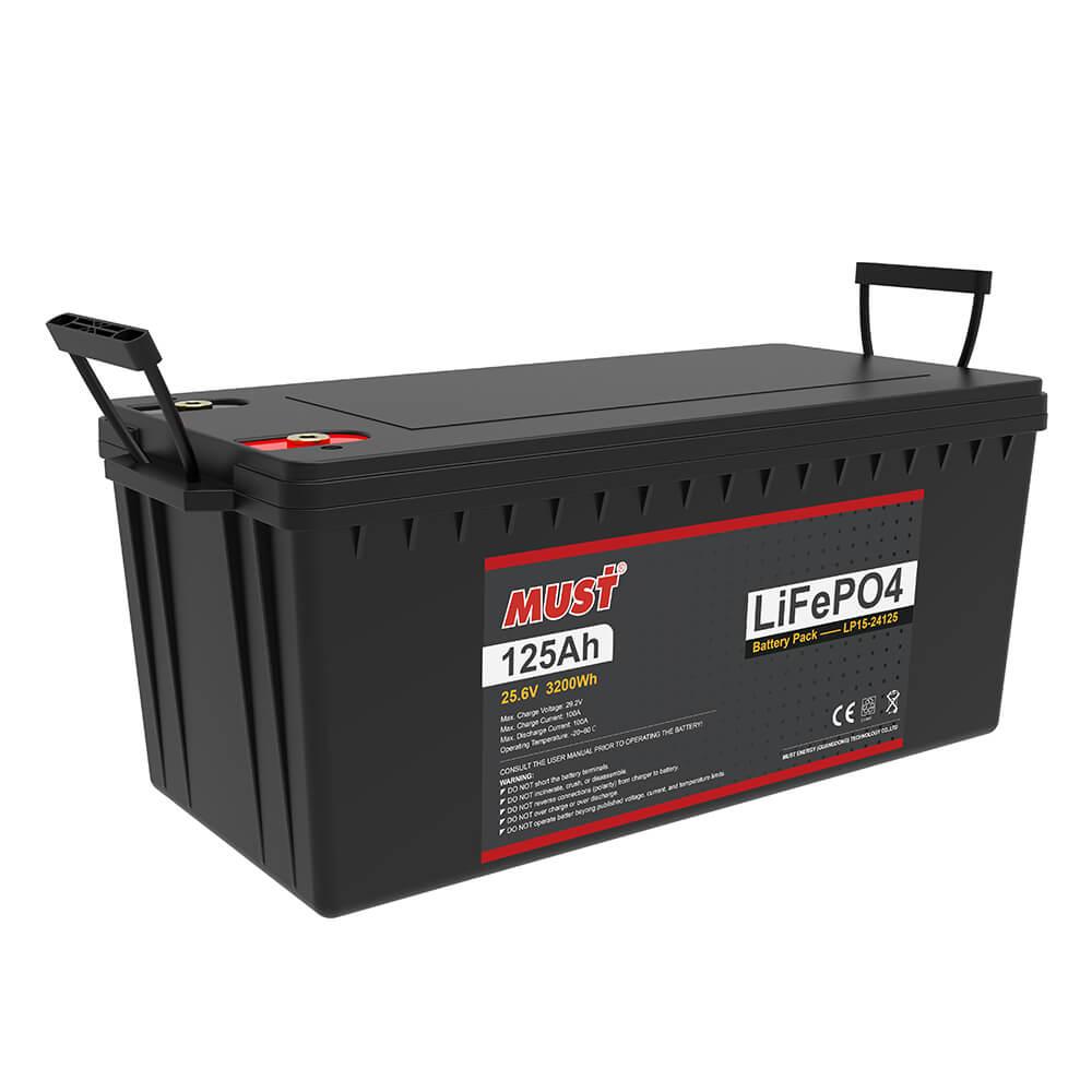 Lithium Iron Phosphate Battery LP15-24125 (25.6V/125Ah)